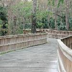Boardwalk to trail connecting to Gemini Springs