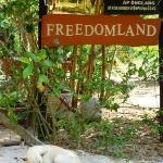 Freedomland entrance