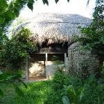 Treehouse outside