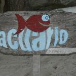 Acuario Logo