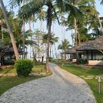 View of bungalows and path to beach