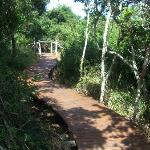 Path leading to accomodation