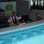 Aqua bar tender Gusatvo!