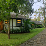 Plantation Style Cottages