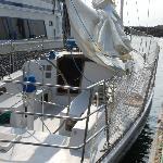 Love Sailing on Scotch Mist II