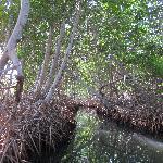 La Restinga National Park