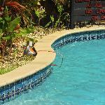 Cord in pool