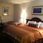 BEST WESTERN Des Plaines Inn Foto