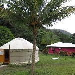 The yurt and one of the cabins
