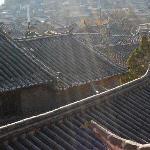 ZenGardenHotel_WY_Roofs