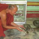 The residing monk and one of the resident snakes