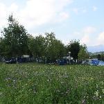 Photo de Camping ai Colli Fioriti