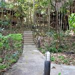 path to the cabanas