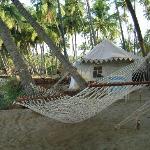 Kolla beach