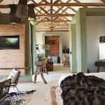 The Olive Caprivi Suite