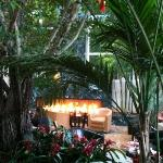 Cozy fireplace in the Sunroom restaurant and bar