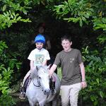 My son and daughter enjoying the horses at Kiltennel House