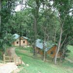 Cabins from the Lodge