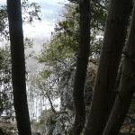 The view from the top - notice the anchient cedars growing from the cliff (they can be as old as