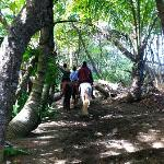 Horseback riding on the trail next to the property