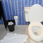 The loo and dopey location of the loo paper