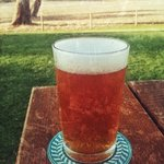 beer at Eagle Bay Brewing