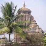 Foto de Lingaraja Temple