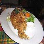 Red snapper (Main)