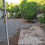The little courtyard garden