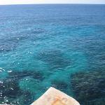 jump into aqua daily