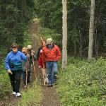 Listen to stories of the Boreal Forest as you meander down the trail