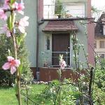 RentKaliningrad Guest Apartments