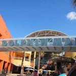 Dolphin Mall Photo