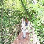 Hängebrücke im Monteverde Nationalpark