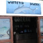 Whitetip Divers office