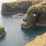 Typicall Old Red Sandstone sea cliffs, East Caithness