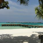 Dhoni Jetty on adults only island