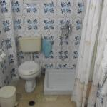 mould in toilet area