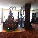 Christmas tree on lobby