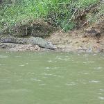 on Sarapiqui River