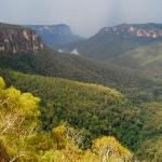 View across Grose Valley from Govetts Leap
