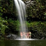 East Maui Waterfalls Hike