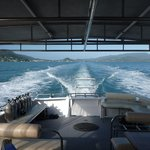 Whitsunday Dive Adventures - Dive Courses & Half Day Dive Trips