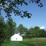 Denmark Farm Eco Campsite with yurt