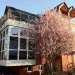Unser Gästehaus Kirschgarten