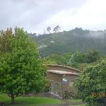 Foto de Cathedral Cove Bed and Breakfast