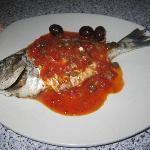 sea bream with Maltese sauce