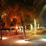 nighttime beach view at the plaza resort bonaire