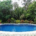 Pool bei Haus 2