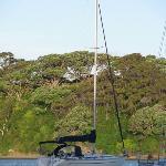Tony's sail boat, the Hinemoana II